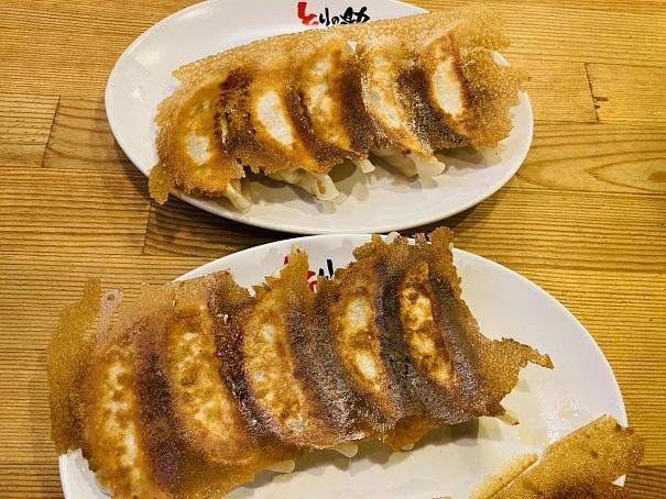 羽付き肉汁餃子(10個)