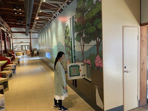 自然生態園展示室で学ぶ