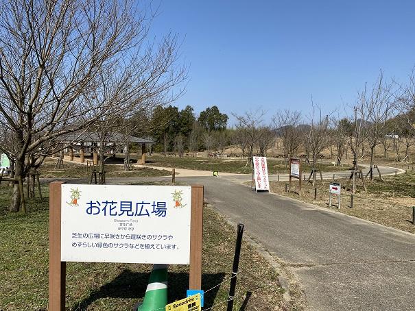 お花見広場(バーベキューコーナー)