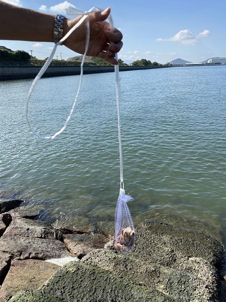 モガニやイシガニ釣り餌と仕掛け