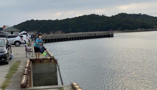新仁尾港のサビキ釣りでイワシが入れ食い アイゴも 三豊市