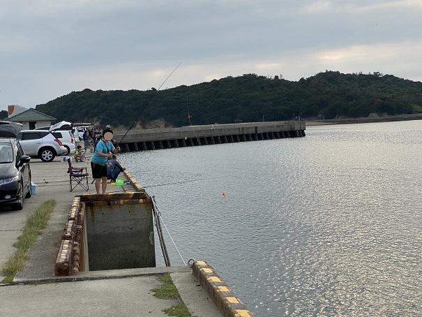 新仁尾港のサビキ釣り