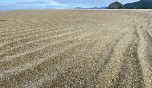 琴弾公園の有明浜海水浴場でマテ貝を潮干狩り 観音寺市
