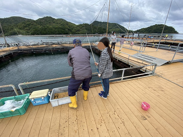 マーレリッコで鯛を釣る