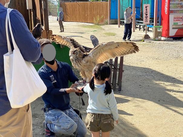 しろとり動物園 猛禽類撮影会2