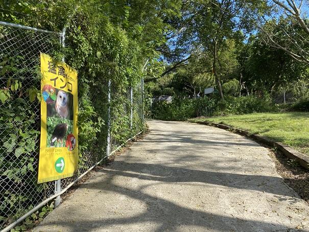 しろとり動物園 猛禽インコエリア