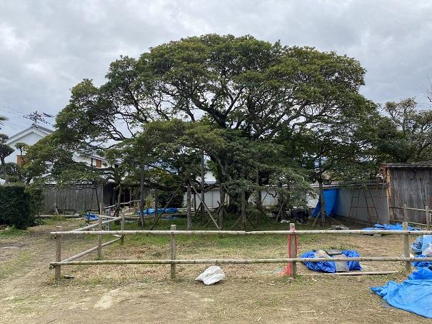 ホルトの木讃州井筒屋敷