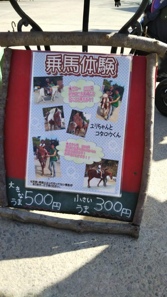 しろとり動物園乗馬体験