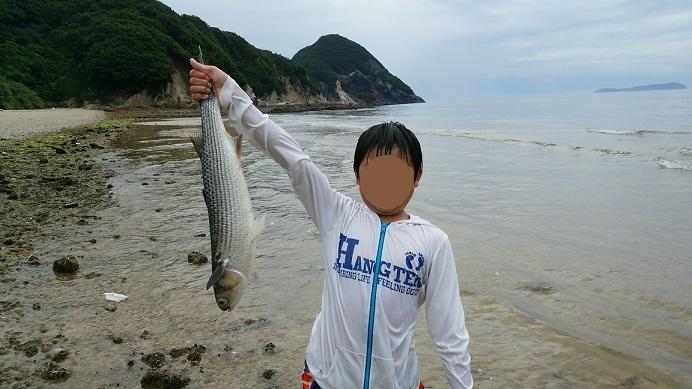 大浜魚を捕る