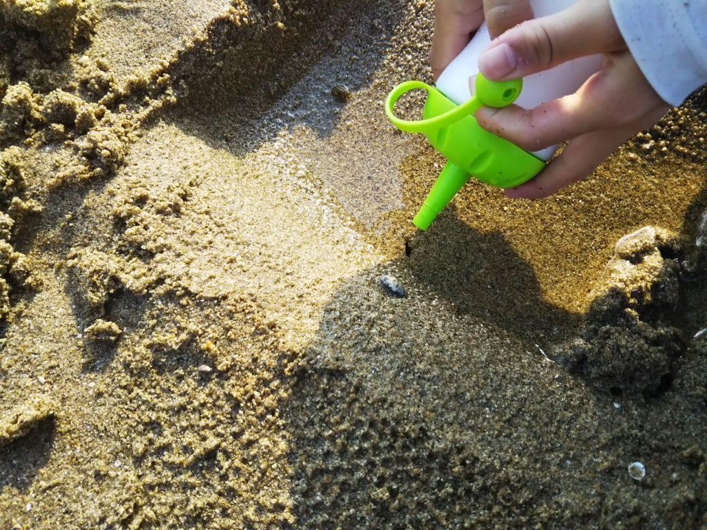 マテ貝の穴に塩を入れる