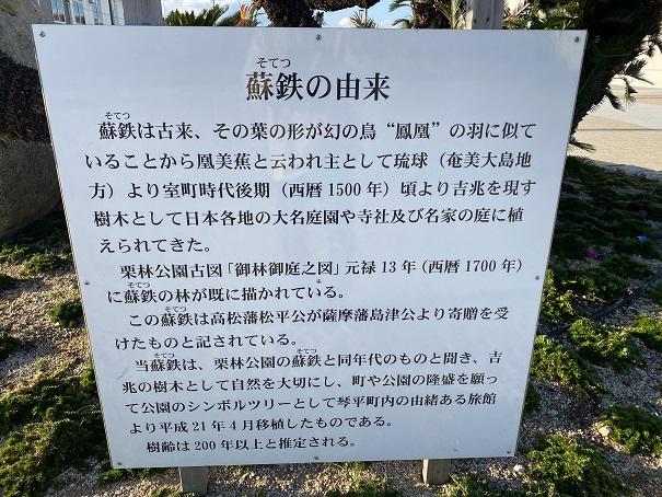 うたづ臨海公園蘇鉄の由来