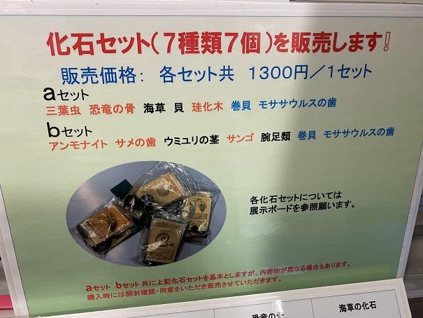 雨滝自然科学館化石セット販売と価格