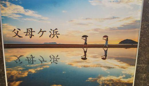 三豊市仁尾町の父母ヶ浜の潮干狩りでマテ貝取り