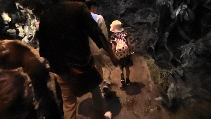 洞窟のような場所
