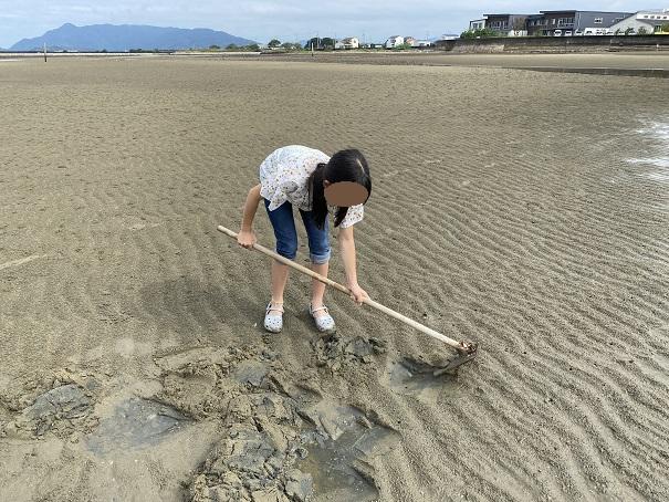 一の宮海岸マテ貝の穴を鍬で探す