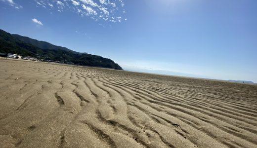 父母ヶ浜の潮干狩りでマテ貝やニナ貝取り 三豊市