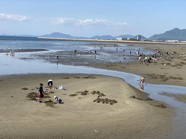一の宮海岸のマテ貝潮干狩り