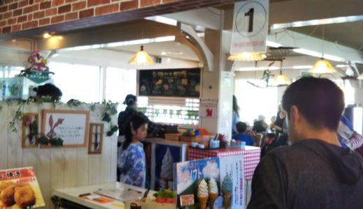 森の国のレストラン 鳥取県