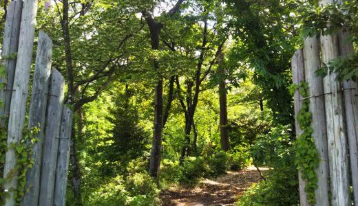 鳥取県西伯郡の森の国フィールドアスレチック昆虫コース