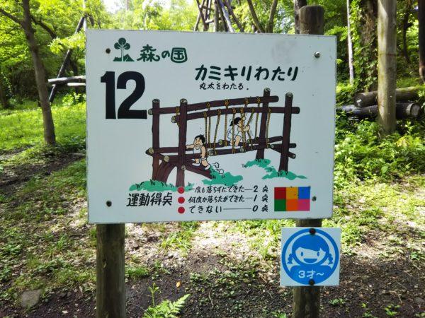 昆虫コース12