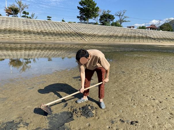 仁尾海岸鍬でマテ貝を掘る