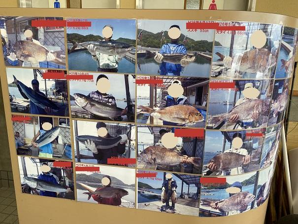 フィッシュフックで大物の魚を釣った人の写真