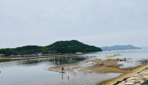 鴨部川河口でマテ貝掘りやアサリの潮干狩り さぬき市
