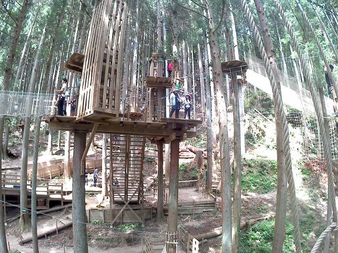 フォレストアドベンチャー・祖谷の風景