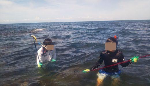 香川県の海で銛を使って子供と安全に魚を突く方法や場所