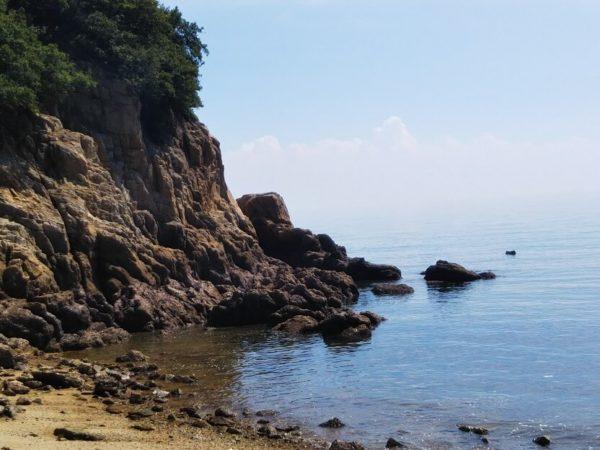 香川県で銛で魚を突ける海