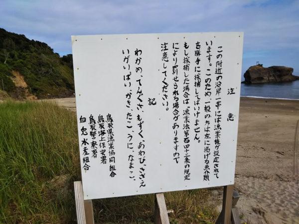 鳥取県の白兎海水浴場の漁業権