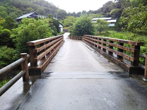 柏原渓谷 tatutaの森への橋