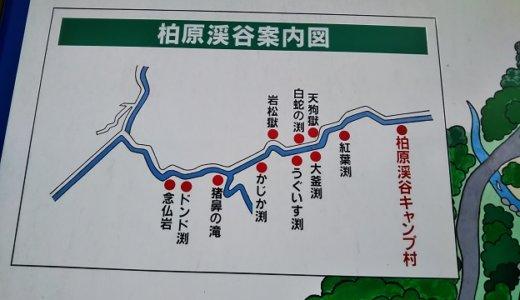香川県綾川町の自然豊かな柏原渓谷で川遊び