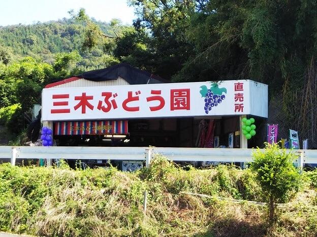 徳島県阿波市三木ぶどう園直売所