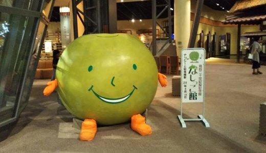 鳥取県の1年中梨の食べ比べができるなしっこ館