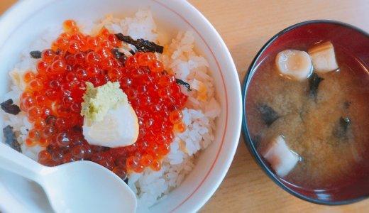 鳥取県 賀露港鮮魚市場かろいち いか太郎で海鮮丼を