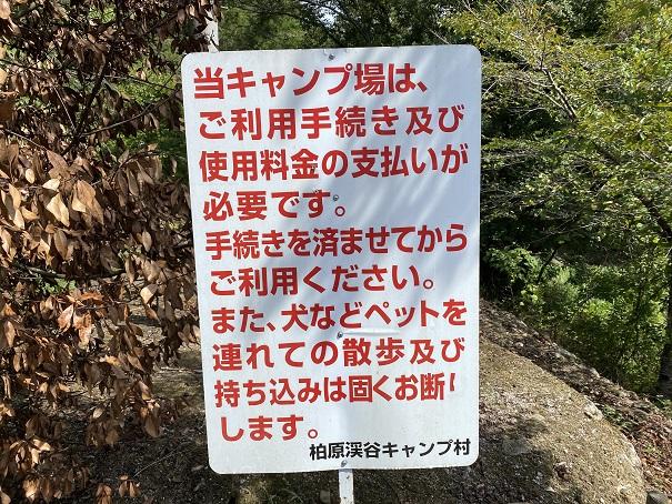 キャンプ村 tatutaの森お知らせ
