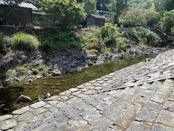 キャンプ村tatutaの森川遊びポイント