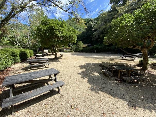 キャンプ村tatutaの森広場
