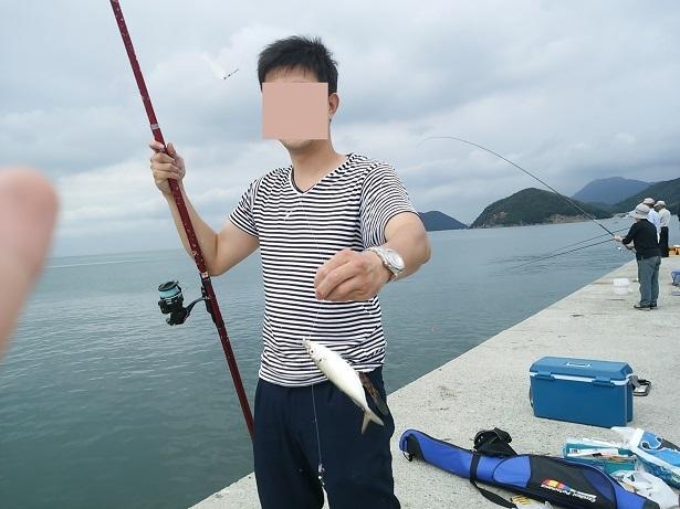 仁尾マリーナでアジを釣る