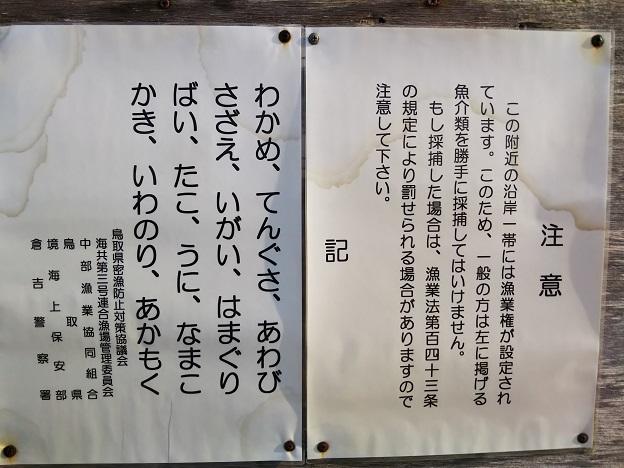 宇野海水浴場 遊漁 注意