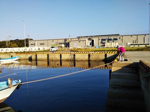 鶴羽漁港内側釣り人