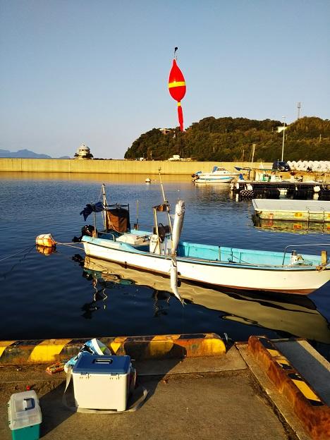 鶴羽漁港でイワシを釣る