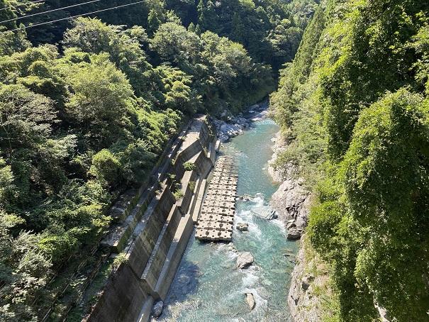 恋人橋から見た穴吹川