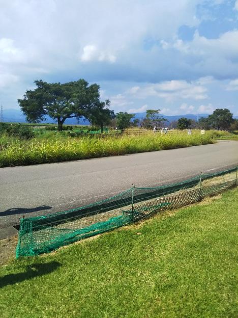 野市ふれあい広場パークゴルフ 間の道路