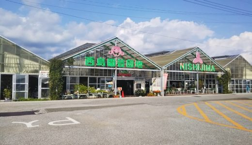 西島園芸団地はフルーツと緑がいっぱい  ジェラートも美味しい 南国市