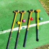 パークゴルフの道具