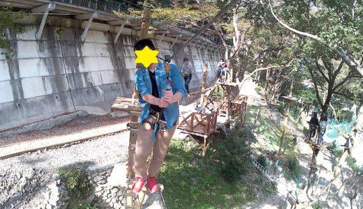 徳島県のツリートレッキング アミーチアドベンチャー四国