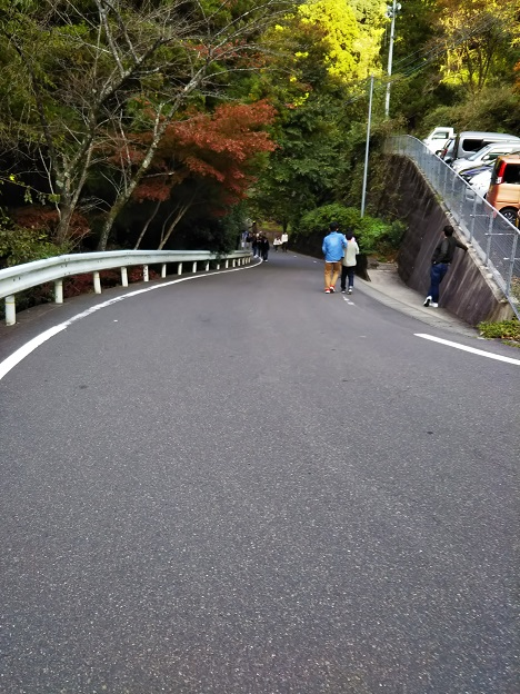 駐車場からかずら橋までの道2