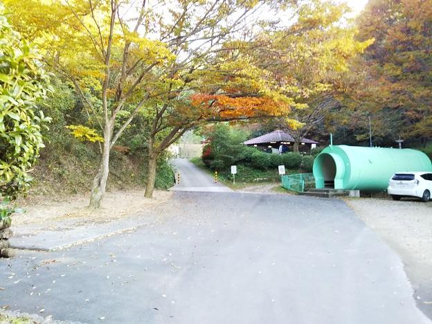 畦田キャンプ場 1